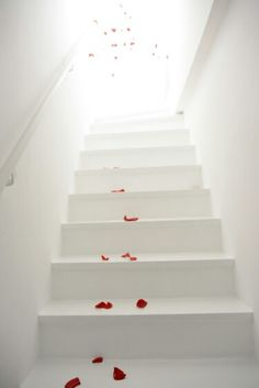 Follow the steps..