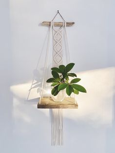 Macrame Art, Macrame Design, Macrame Projects, Wall Plant Hanger, Plant Wall, Weaving Wall Hanging, Diy Hanging, Butterfly Wall Decals, Rope Crafts