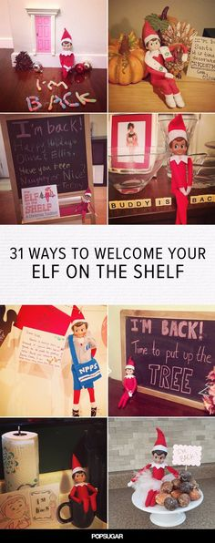 31 Elves That Made a Spectacular Return to the Shelf