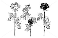 Red Ink Tattoos, Flower Tattoos, Body Art Tattoos, Cloud Tattoo Sleeve, Sleeve Tattoos, Rosa Stencil, Simple Tattoos For Women, Photo Libre, Flower Sketches