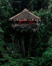 Party Hut - Amazing Treehouse