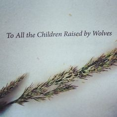 to all the children raised by wolves ...