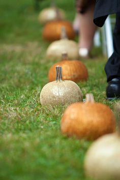 Fall wedding aisle decor - pumpkins in alternating colors Cheap Wedding Venues, Diy Wedding, Fall Wedding, Rustic Wedding, Dream Wedding, Wedding Stuff, Wedding Ceremony, Autumn Weddings, Decor Wedding