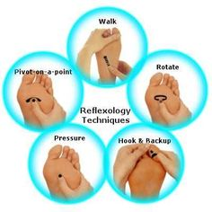 Reflexology terms & techniques - Common reflexology terms are transverse zones, foot aspects, and crystal deposits. Reflexology manipulation techniques are walking, rotating, hook & back up, pressing, and pivot on-a-point techniques.5 Transverse lines in ReflexologyFive transverse lines are on the plantar aspect, they are