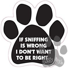 If Sniffing Is Wrong I Don't Want To Be Right Dog Paw Magnet http://doggystylegifts.com/products/if-sniffing-is-wrong-i-don-t-want-to-be-right-dog-paaw-magnet