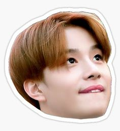 Pegatina Jungwoo sticker Pop Stickers, Meme Stickers, Tumblr Stickers, Printable Stickers, Wallpaper Aesthetic, Aesthetic Gif, Bisnis Ideas, Nct Logo, Diy Case