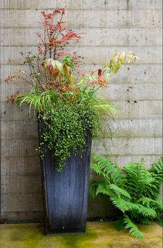 Fresh Ideas For Fall Planters U2014 The Gardenist. Tall Outdoor ...