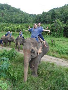I want to ride an elephant!!