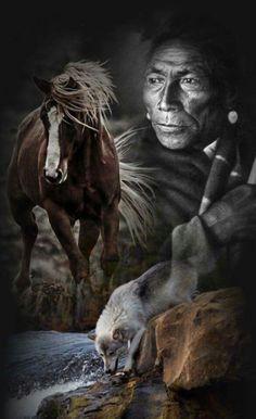 animal and native american www. Native American Beliefs, Native American Horses, Native American Pictures, Native American Artwork, Native American Beauty, Indian Pictures, American Spirit, American Indian Art, Native American History