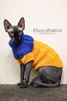 Cat Sweaters, Hand Knitted Sweaters, Baby Girl Headbands, Baby Bows, Handgestrickte Pullover, Knitted Cat, Pet Fashion, Blue Cats, Cat Gifts