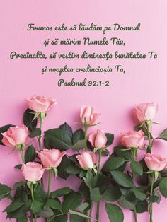 Bible, Bible Quotes