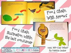 Food Chain Mentor Text- great science lesson!