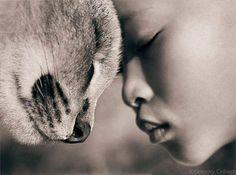"""""""Encontre a doçura no seu coração que você pode encontrar a doçura em cada coração.""""  ღ Rumi ღ"""