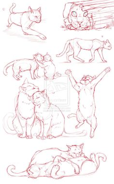 Cat Dump by jessyr on deviantART