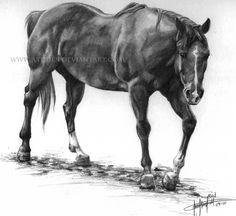 Red-The Quarter Horse by AnnaCStansfield.deviantart.com on @deviantART