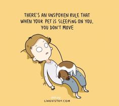 10 Fun Animal Comics By Russian Artist Duo Lingvistov and like OMG! get some yourself some pawtastic adorable cat apparel! Animal Quotes, Dog Quotes, Funny Quotes, Cutest Quotes, Cat Sayings, I Love Dogs, Puppy Love, Cute Dogs, Funny Dogs