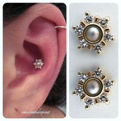 Solid gold and pearl mini toltect conch piercing