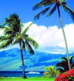 Another beautiful day in Napili on West Maui. Photo: Brett Uprichard