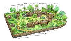 Resultado de imagem para design permaculture
