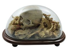 Memento Mori | From a unique collection of antique and modern sculptures at https://www.1stdibs.com/furniture/decorative-objects/sculptures/