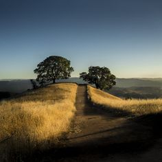 Mount Diablo offers excellent hiking trails and great views from the East Bay. San Francisco To Do, Living In San Francisco, Bay Area Hikes, East Bay Area, Tahoe City, Asia Travel, Dublin Travel, Ireland Travel, Park Around