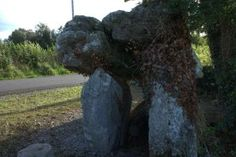 Annaghmore Portal Tomb is situated on a gentle west facing slope, at the side of a small back-road in Leitrim. The Portal Tomb used to stand on the dividing line between two fields but thankfully s…