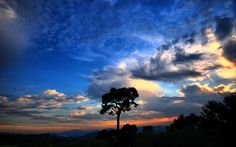 sunset clouds nature trees silhouette skyscapes  / 1920x1200 Wallpaper