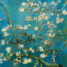 Almond Branches in Bloom San Remy, (1890)  Vincent Van Gogh