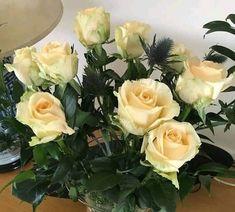 Plants, Rose Arrangements, Plant, Planting, Planets