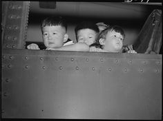 Eden, Idaho. Gerald, 5, David, 6 and Chester Sakura, Jr., 1-1/2 brothers. These little evacuees, along with 600 others from the Puyallup assembly center, have just arrived here and will spend the duration at the Minidoka War Relocation Authority center.  Photographer: Francis Stewart
