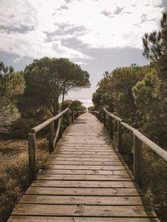 Spain, Sidewalk, Blog, Instagram, Sevilla Spain, Side Walkway, Walkway, Blogging, Walkways