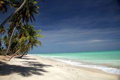 Cinco praias de Alagoas que você não pode deixar de visitar