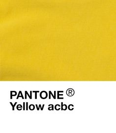 acbc yellow Basic Outfits, Pantone, Kids Fashion, Yellow, Children, Fun, Clothes, Basic Clothes, Young Children