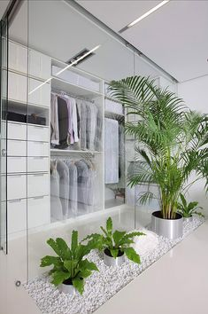 Home Interior Cool With Plants: Chic White Cube of Apartment Interior Plant Design indoor planters ideas Patio Interior, Apartment Interior Design, Interior Decorating, Interior Plants, Interior Designing, Minimalist Closet, Minimalist Apartment, Minimalist House, Minimalist Bathroom