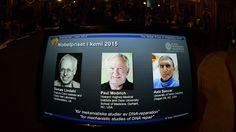 Tomas Lindahl, Paul Modrich, Aziz Sancar:  Nobel de Química a los mecánicos que reparan el ADN   Ciencia   EL PAÍS