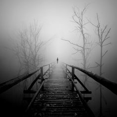 *alone in the fog*