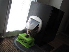 """IKEA Hackers: """"Très chic"""" Kitty Litter Bin Obscurer"""