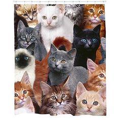 Sharp Shirter Cats for Days Shower Curtain, http://www.amazon.com/dp/B00NGULND4/ref=cm_sw_r_pi_awdm_nV-2vb1YJYCVV