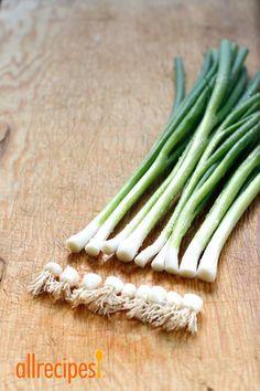 DIY An Endless Supply Of Fresh Green Onions