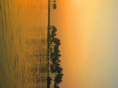 Shades Of Nature...Sunrise