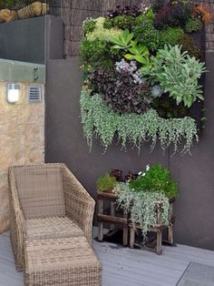 Succulent Wall Garden... So beautiful....