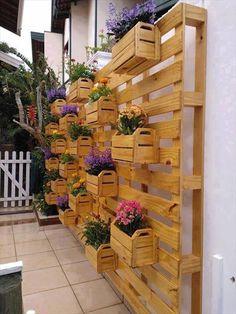 Idéia de DIY Pallet caixa parede jardim: Temos a certeza que você vai adorar este jardim de parede DIY pálete tem sido handcrafted de algumas paletes e caixotes e contêm uma única natureza de flores em cada caixa. Você pode fazer qualquer parede exterior para beleza com essa idéia de jardim de madeira feito à mão.