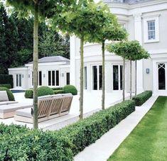 Gorgeous backyard.  White and greenery