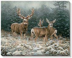 "Rosemary Millette Open Edition Wrapped Canvas: ""Snowy Retreat – Mule Deer """