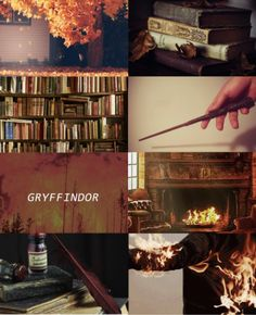 gryffindor aesthetic - Google Search