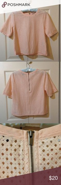 Mesh crop top Pale dusty rose mesh crop top from Banana Republic.  Exposed back zipper.  Nylon/cotton.  Worn only twice.  Super cute but I need to pay tuition! Banana Republic Tops Crop Tops