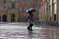 Rain on Piazza Maggiore by noralf, via Flickr