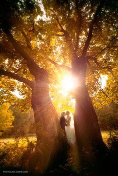 Wedding of Alexey and Olga by Photocafe , via 500px
