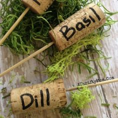 garden projects DIY Ideas for Your Garden - Wine Cork Garden Markers DIY - Cool Projects for Spring and Summer Gardening - Planters, Rocks, Markers and Handmade Decor for Outdoor Gardens Diy Gardening, Container Gardening, Organic Gardening, Vegetable Gardening, Vegetable Garden Markers, Flower Gardening, Spring Vegetable Garden, Garden Plant Markers, Gardening Direct