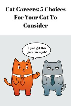 Cats are very talented, so of course they aspire to great things. Does your cat dream of a successful career? Here are five cat careers for him to consider: